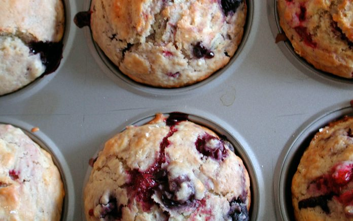 bosbessen-cupcakes